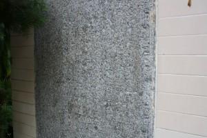 金蘭廟 石碑 05 條規 03